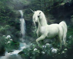 Unicorn[1]